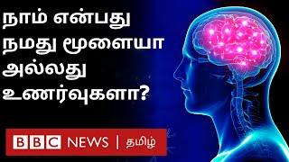 புதிய தொழில்நுட்பங்கள் நம் மூளைப் பயன்பாட்டை குறைக்குமா? | Interesting facts on Human brain