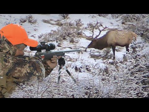 Big Bulls on Public Land – Rifle Elk Hunting (Eastmans' Hunting Journals)