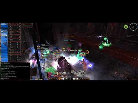 Lotro - The Fallen Kings Tier 3 Beorning PoV