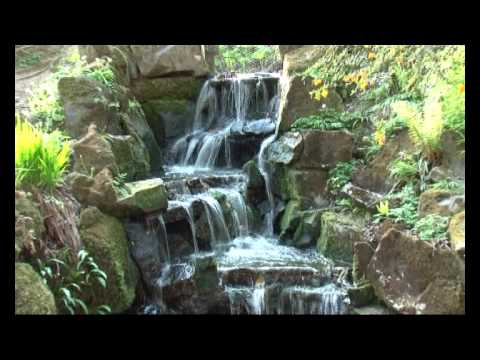 Clyne Gardens in Bloom 2010.mp4