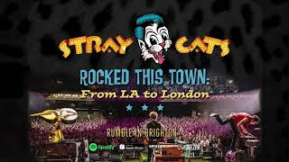 Stray Cats - Rumble In Brighton (LIVE)