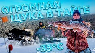 РЫБАЛКА НА ДИКОМ ОЗЕРЕ ТАЙГИ Экспедиция в Архангельскую обл