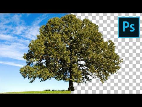 Come SCONTORNARE qualsiasi cosa in modo FACILE e VELOCE in Photoshop CC