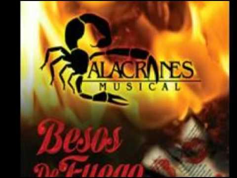 yo te necesito - alacranes musical 2012 ( besos de fuego)