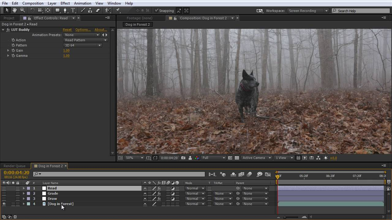 How to Create LUTs in Adobe After Effects and Premiere Pro