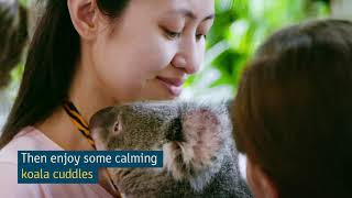 Three Days in Cairns | City Guides | Tourism Australia