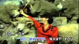 Don't Ever Leave Me Paul Anka Karaoke Instrumental Videoke