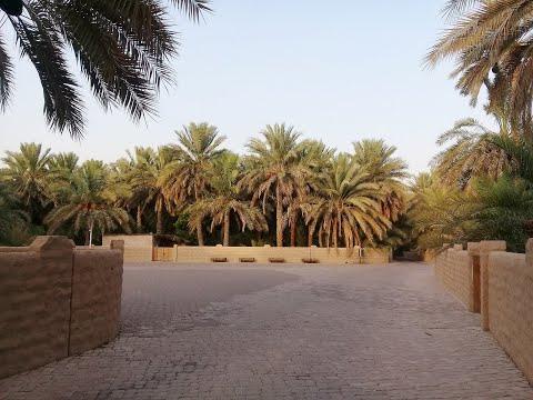 AL AIN - UAE travel blog