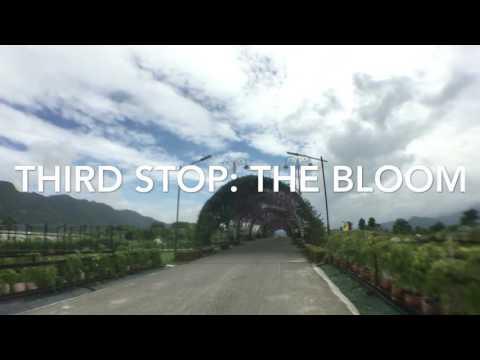 [ YL Travel vlogs #1 ] - Bangkok, Thailand Day 2 of 3 (PART II)