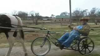 Wheelchair Horse Buggy (another Dsarti1 Redneck Brainstorm).
