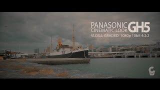 Panasonic GH5 Cinematic Look Grade 10bit 4:2:2 VlogL 1080p