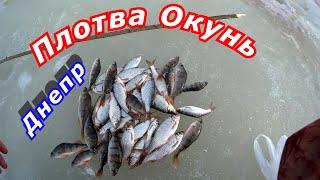 Плотва окунь рыбалка на реке