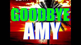 "GNTM 2015 CASTING SONG ""GOODBYE AMY"" (Radio Mix) GERMANYS NEXT TOPMODEL 2015"