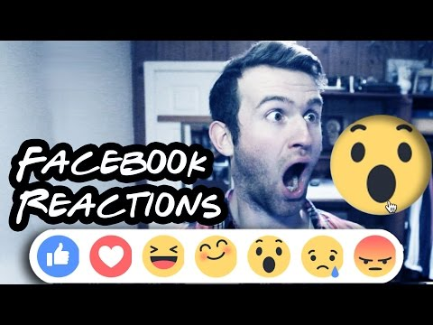 How to React to FACEBOOK REACTIONS | TheSonicScrew