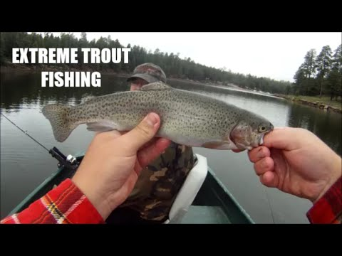 trolling for rainbow trout using worms and crawdads (hd) - youtube, Fly Fishing Bait