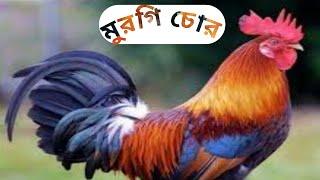 (মুরগি চুর) Bangla funny video 2020 release by UFT.
