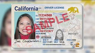 2 On Your Side: Real ID Trouble