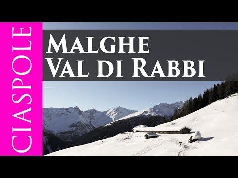 Ciaspolata Alle Malghe In Val Di Rabbi