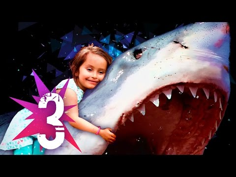Kids Vs Adults - Andyde YouTube · Durée:  4 minutes 23 secondes