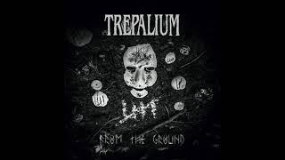 TREPALIUM - Secretly Depressed (NEW SONG !!)