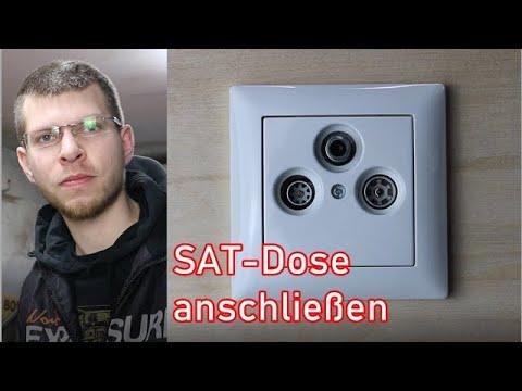 sat-dose-anschließen