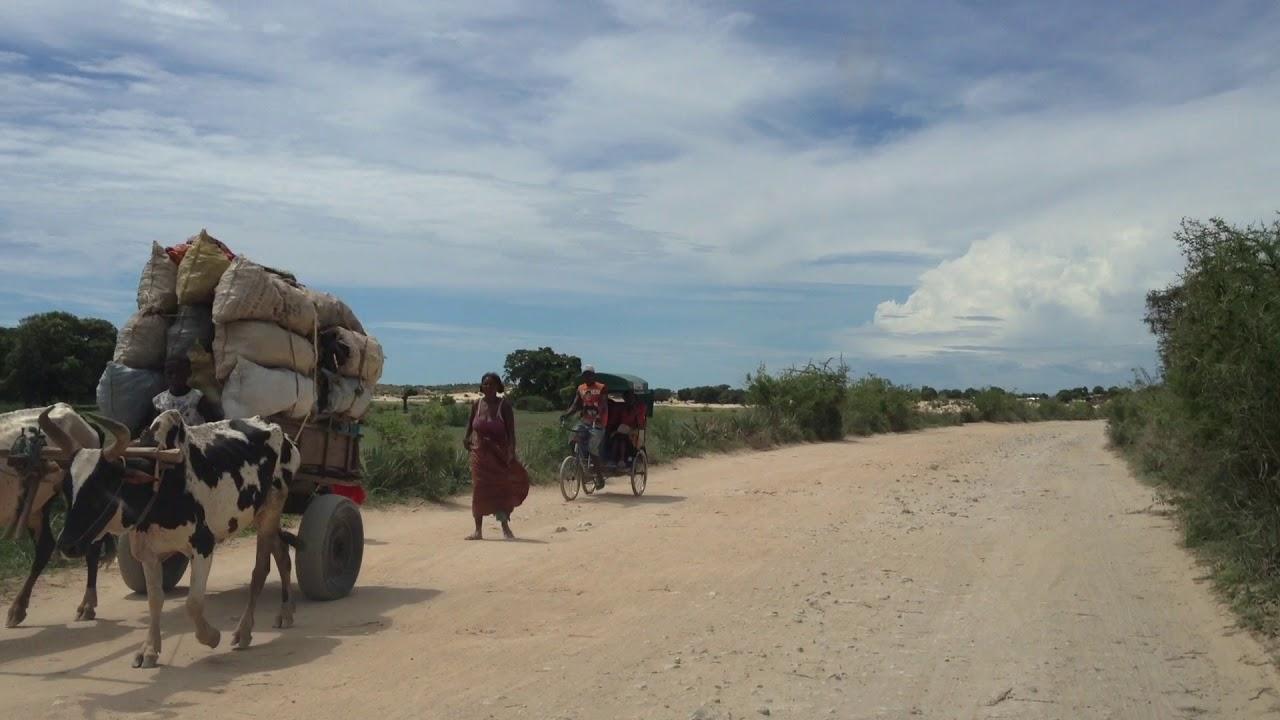Madagascar road