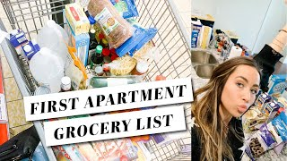 The Ultimate First Apartment Grocery List - HUGE Grocery Haul