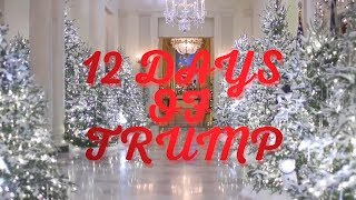 12 days of Trump