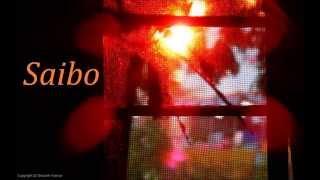 Saibo - Shor In The City (Audio)