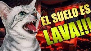 EL SUELO ES LAVA THE FLOOR IS LAVA (RECOPILACIÓN)