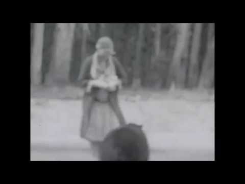 Feeding Bears in Yellowstone National Park 1920s