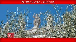 Papst Franziskus - Palmsonntag - Feier des Leidens unseres Herrn - Angelusgebet 2019-04-14