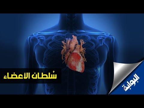 حقائق  مذهلة عن القلب قد لا تعرفها