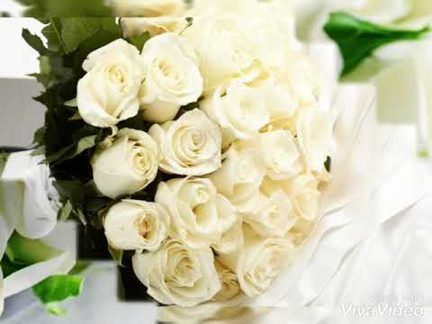 Букет из белых роз! - Музыкальная открытка для любимой женщины!