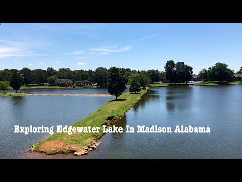 EXPLORING LADY ANN LAKE IN MADISON ALABAMA | I SEE THREE SNAKES!!!