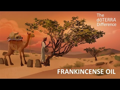 Frankincense Oil - The doTERRA Difference