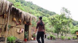 【南方小蓉】我住在深山小屋,今天砍竹筍爆炒臘肉,取至原生態的食材太香了