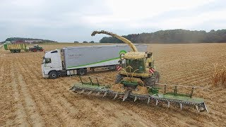 Krone big X1100 14 rows | XXL | mais hakselen | maishäckseln | Chopping Corn Silage