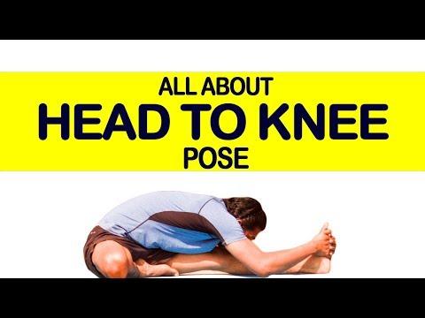 Head to Knee Pose (Janu Sirsasana): Yoga for Beginners | Triyogam Series