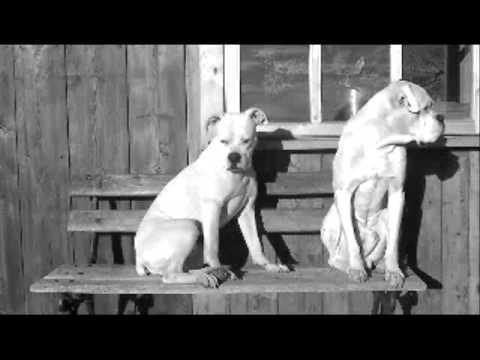 RELAKS czyli MARIAN I LEON na ławeczce