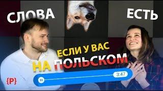 Полезные польские слова, если у вас есть собака