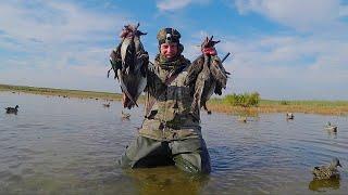 ОТКРЫТИЕ ОХОТЫ УТКИ ОЧЕНЬ МНОГО и ГУСИ ЕСТЬ Охота на утку с чучелами