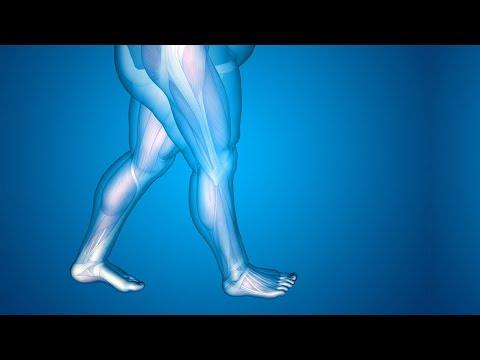 لهذه الأسباب يحتبس الماء فى الجسم .. ويؤدى الى زيادة الوزن