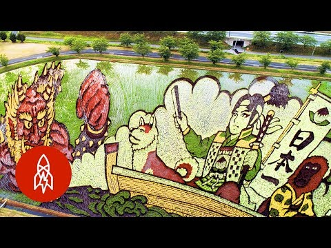 These Murals Were Grown from Rice (Việt Sub)