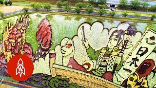 These Murals Were Grown from Rice
