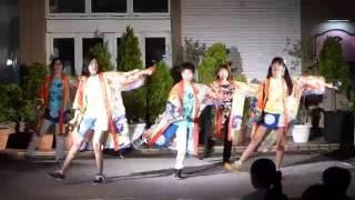 20160812通町草市:いやさかAKITA:秋田まるまる愛好会