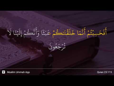 Al-Mu'minun Ayat 115