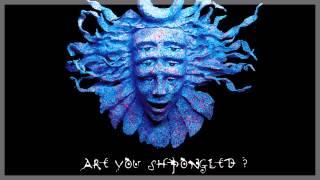 Shpongle - Behind Closed Eyelids