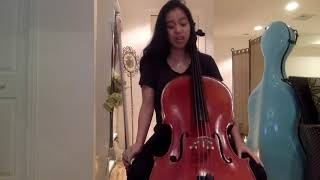 Introduction to the Cello