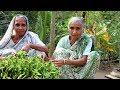 Grandma's Special Fenugreek Leaf Recipe | Tasty & Healthy Vegetarian Dishes | Village Food